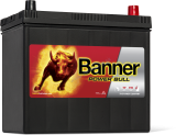 BANNER POWER BULL P45 23, 45AH, 12V ( P4523 )
